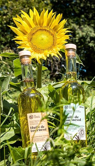Nous huiles de tournesol bio, fabriquées en Limousin, Nouvelle-Aquitaine.