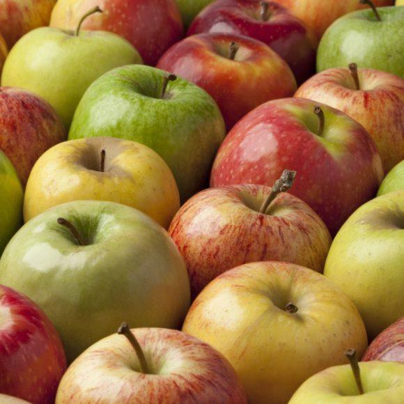 Dimanche, Fête de la pomme  à Ste Anne St Priest (87)